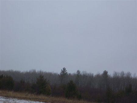 00 Hwy 16 Mls #1058610 : Kenton : Houghton County : Michigan