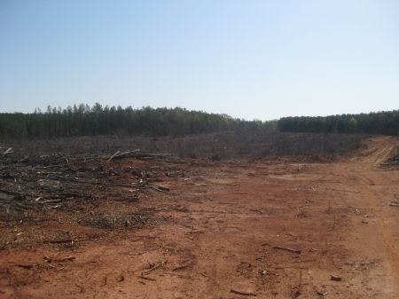 107 Acre Investment : Lawrenceville : Brunswick County : Virginia