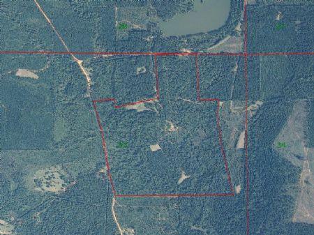 State Lake 160 : Beatrice : Monroe County : Alabama