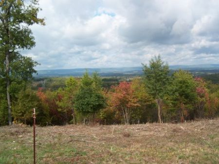 125+/- Acres Close To Chattanooga : Harrison : Hamilton County : Tennessee