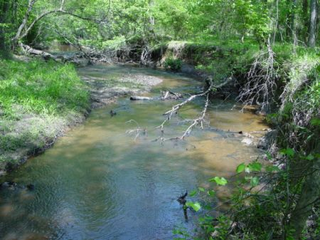 189.4 Acres On Enon Grove Rd. : Franklin : Heard County : Georgia
