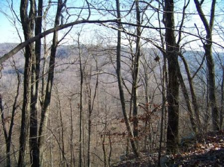 50 Acres For Only $99,000 : South Pittsbug : Marion County : Tennessee