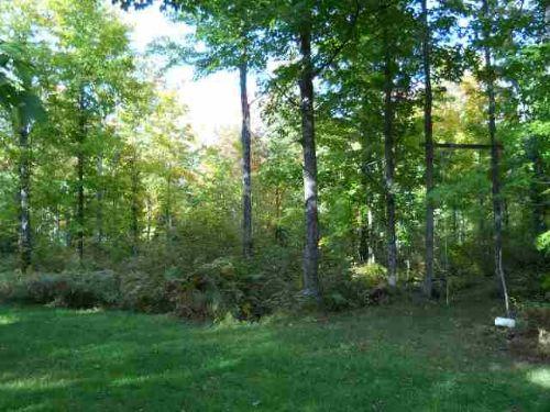 Tbd Wests Road Mls #1058950 : Amasa : Iron County : Michigan