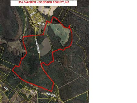 Great Timber And Farm Investment : Lumberton : Robeson County : North Carolina