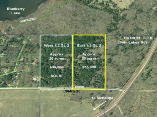 Wadena, Blueberry, 1383511, E2gl2 : Menahga : Wadena County : Minnesota