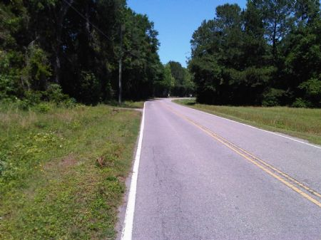 140 Acres : Sumter : Sumter County : South Carolina