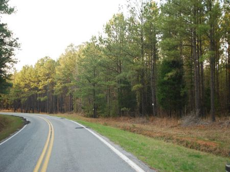 Hunting And Timber Extraordinaire : Union : Union County : South Carolina