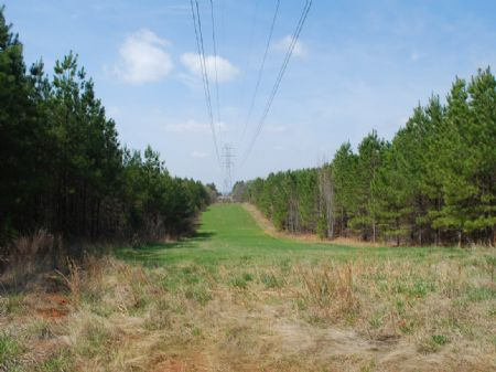 Recreational Tract Near Spartanburg : Union : Union County : South Carolina