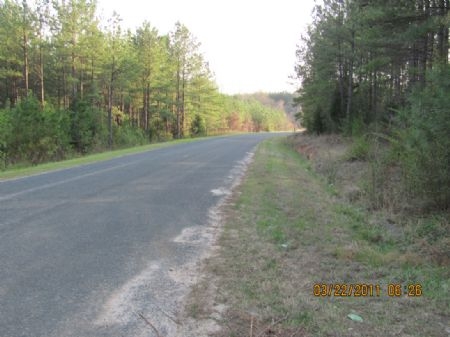 34-acre Hunting Tract Near River : Union : Union County : South Carolina