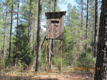 205 Acres Of Hunting And Timberland : Gaffney : Cherokee County : South Carolina