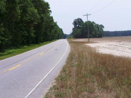 C.l. Peeples Tract B : Estill : Hampton County : South Carolina