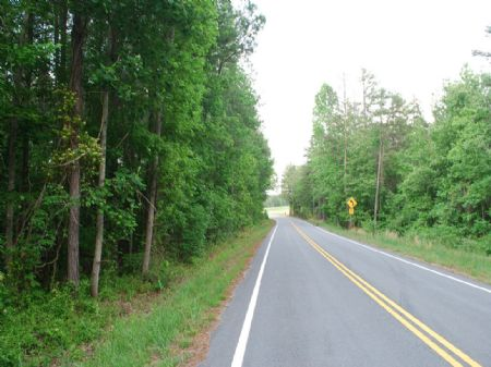 254 Acre Timberland Tract : Spartanburg : Spartanburg County : South Carolina