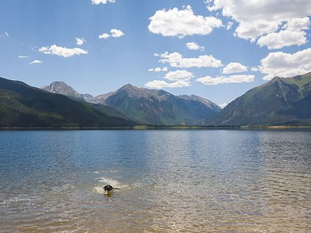 Bank Forced Sale  Lake Access : Twin Lakes : Lake County : Colorado