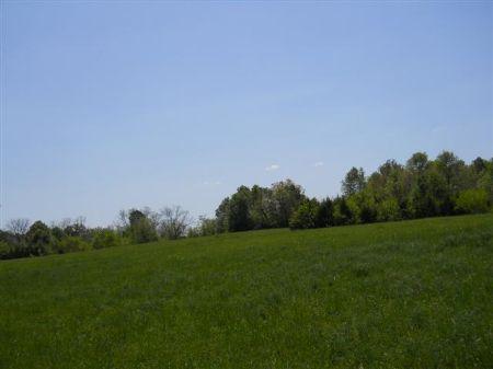113 Acres In Starkville, Ms : Starkville : Oktibbeha County : Mississippi