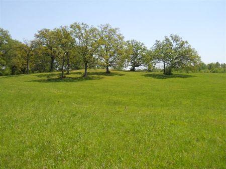 80 Acres In Starkville, Ms : Starkville : Oktibbeha County : Mississippi