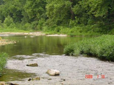 17 Acres Sylamore Creek : Mountain View : Stone County : Arkansas