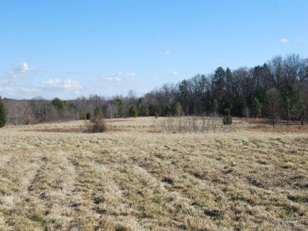 Estate Homesites On 6.24 Acres : Chesnee : Spartanburg County : South Carolina