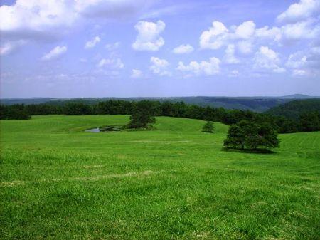 Bear Creek Farm : Tilly : Searcy County : Arkansas
