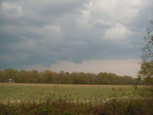 Akins Pond, Will Divide : Statesboro : Bulloch County : Georgia