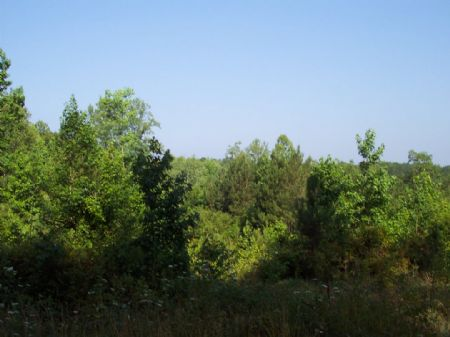 10.55 Private Acres Tract A : Acworth : Bartow County : Georgia