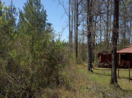 22067hb001 Pump Station : Bastrop : Morehouse Parish : Louisiana