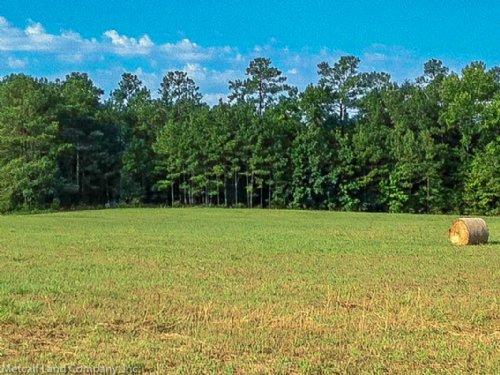 80 Acre Recreational Tract : Blackstock : Chester County : South Carolina