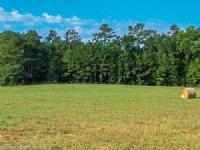 46 Acre Piedmont Paradise