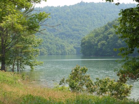 Bunch Hollow : Tazewell : Claiborne County : Tennessee