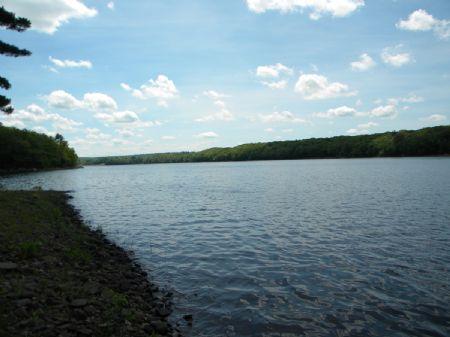 8+ Wooded Acres On Reservoir : Forestburgh : Sullivan County : New York