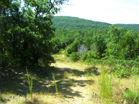 Mountain View Estates Sardis Lake 3 : Clayton : Pushmataha County : Oklahoma