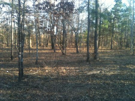 Rattan Landing Estates N Tract 2.1 : Rattan : Pushmataha County : Oklahoma