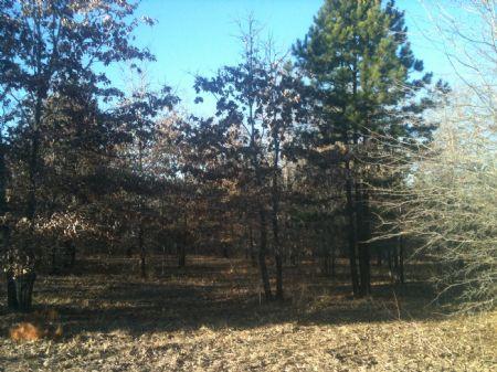 Rattan Landing Estates Creek T 1 : Rattan : Pushmataha County : Oklahoma