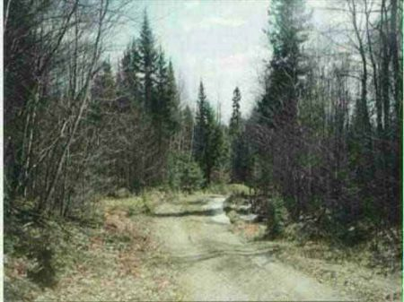 Tbd Off Ned Lake Rd  Mls #1060213 : Michigamme : Baraga County : Michigan