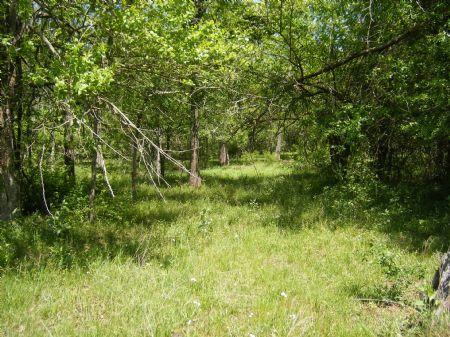 Deer Run Creek Tract 6 : Idabel : McCurtain County : Oklahoma