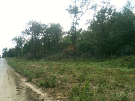 Deer Run Creek Tract 3 : Idabel : McCurtain County : Oklahoma