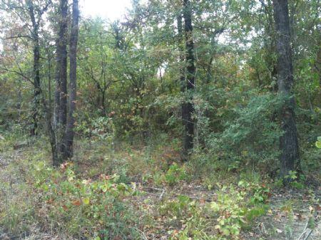 Deer Run Creek Tracts 3 & 4 : Idabel : McCurtain County : Oklahoma