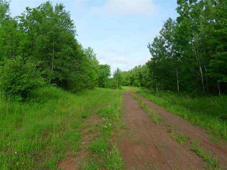 Tbd Firesteel Road  Mls # 1060571 : Ontonagon : Ontonagon County : Michigan