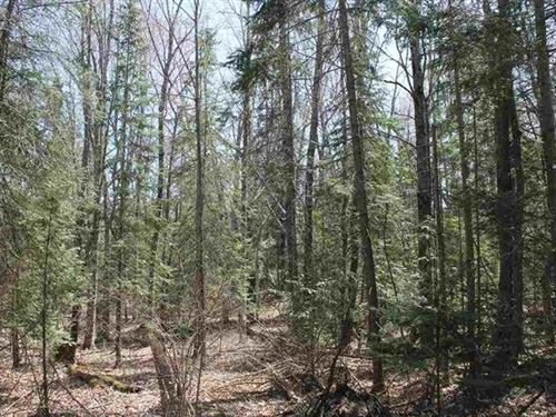 Pequaming Rd Mls 1106867 : L'anse : Baraga County : Michigan