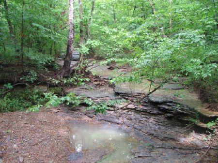 Flat Creek Tract : Berry : Fayette County : Alabama