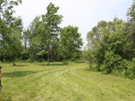 20 Acres In Rothbury : Rothbury : Oceana County : Michigan