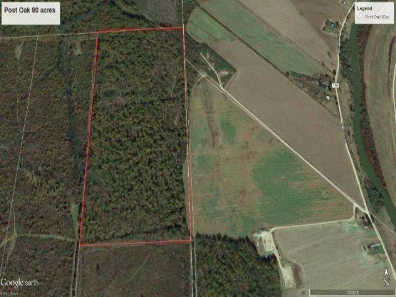 80 Acres : Belzoni : Humphreys County : Mississippi