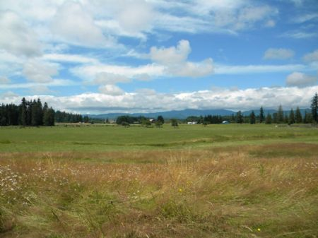 160 Acre Farm With Frontage On I-5 : Olympia : Thurston County : Washington