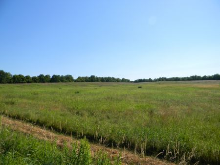 25 Acres Quality Farmland & Woods : Lapeer : Cortland County : New York