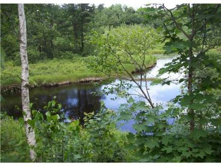 Pendexter Brook Parcel : Parsonsfield : York County : Maine