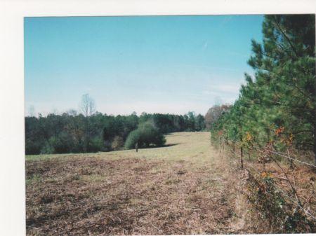 Ac242- Woodland School District : Woodland : Randolph County : Alabama