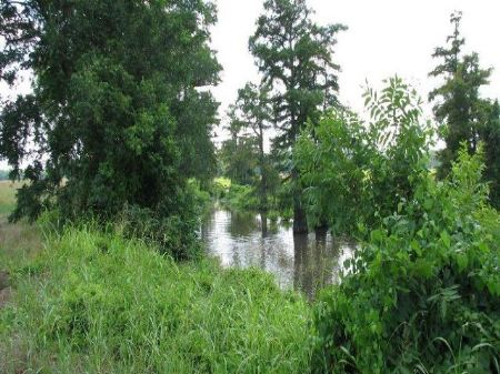 Whitney Lake 764 Acres : Darling : Quitman County : Mississippi