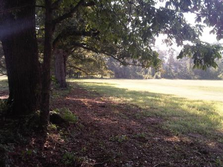 76.26 Acres In Wagener, Sc : Wagener : Aiken County : South Carolina