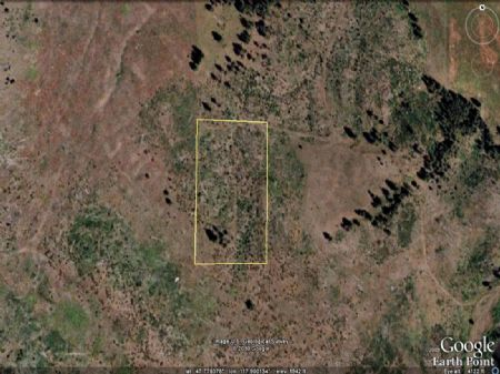 5.27 Acre Parcel Near Reardan : Reardan : Lincoln County : Washington