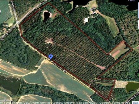 71.17 Acres On Sid Lanier Road : Millen : Jenkins County : Georgia