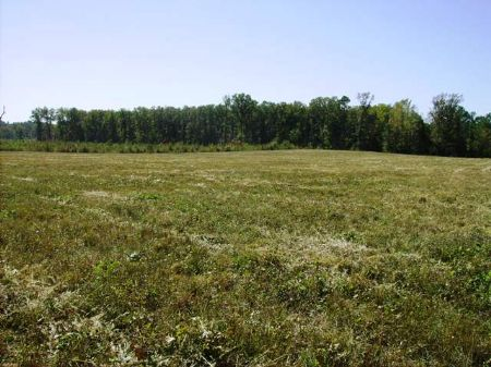 220 Acre Wetland In Saline County : Lonsdale : Saline County : Arkansas